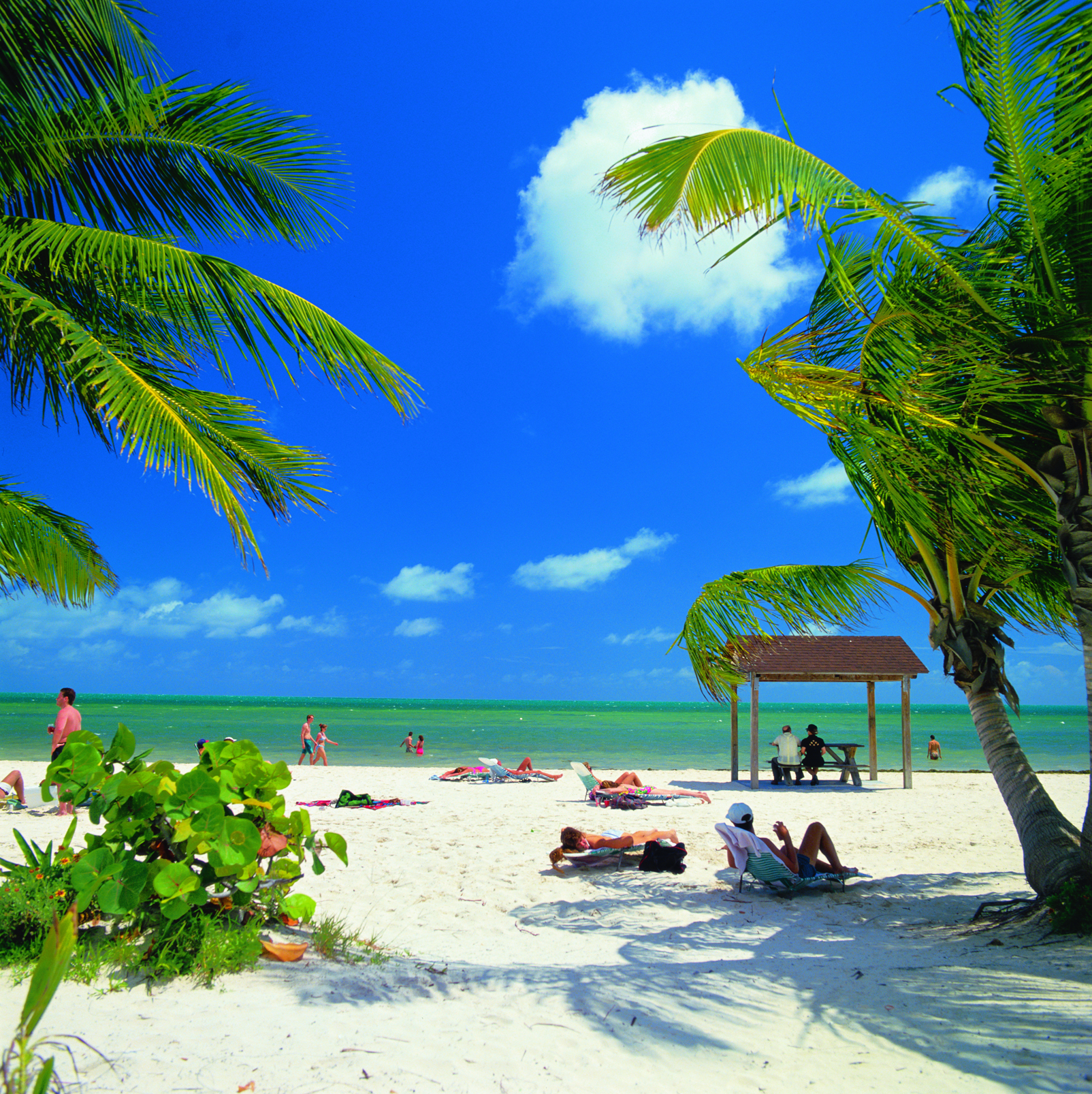 Travel Deals To Key West In January